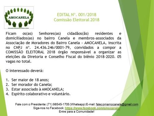 Comissão Eleitoral 2018