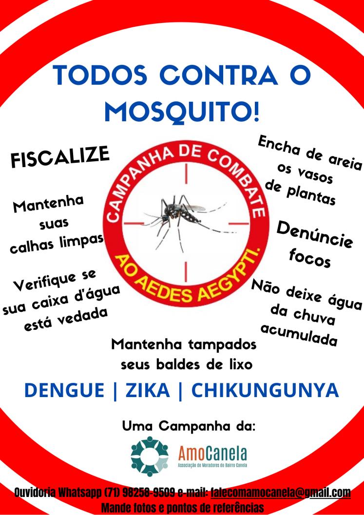 Campanha de combate ao mosquito Aedes aegypti(1)